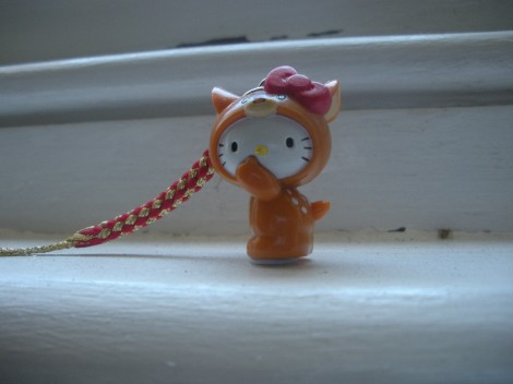 Shuka kitty